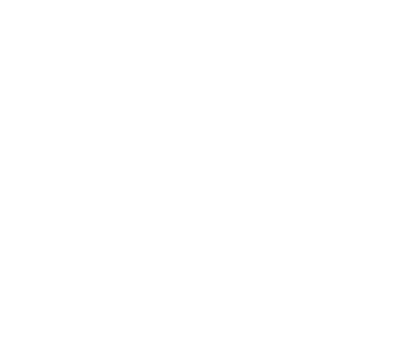 IDS Systems